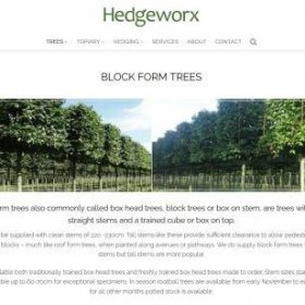 category page layout for plant nursery